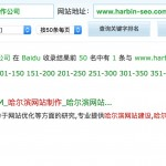 哈尔滨网站制作公司排名:28
