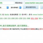 哈尔滨网站优化排名:8