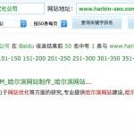 哈尔滨网站优化公司排名:3