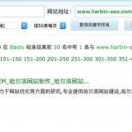 哈尔滨SEO排名:2