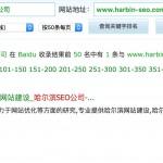 哈尔滨SEO公司排名:1