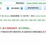 哈尔滨网站制作排名:28
